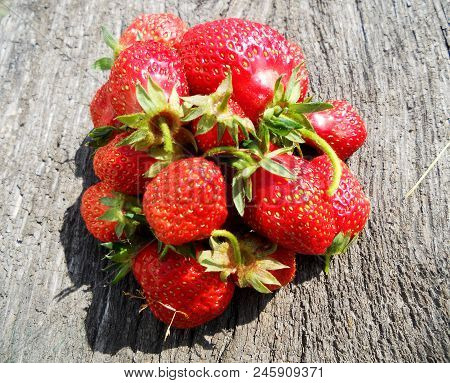 The Photo Shows Whole Ripe Berry Red Strawberry, Green Stem Leaf. Strawberry Photography Consisting