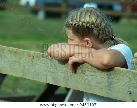 Leaning On The Fence
