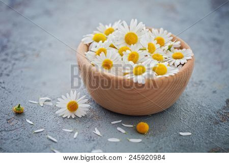 camomile or chamomile flowers - herbal medicine
