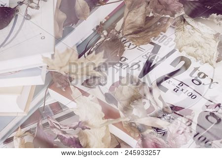 Abstract Background With School Mathematical Textbooks, Books, On Table Covered With Dry Leaves. Top