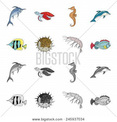 Shrimp, Fish, Hedgehog And Other Species.sea Animals Set Collection Icons In Cartoon, Monochrome Sty