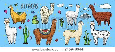 Set Of Cute Alpaca Llamas Or Wild Guanaco On The Background Of Cactus And Mountain. Funny Smiling An