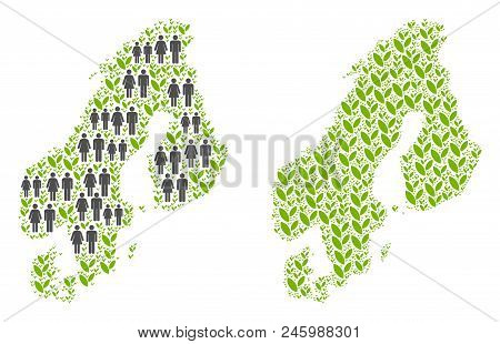 People Population And Eco Scandinavia Map. Vector Concept Of Scandinavia Map Constructed Of Random C