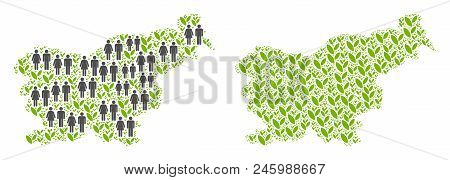 People Population And Grass Slovenia Map. Vector Collage Of Slovenia Map Done Of Randomized Person A