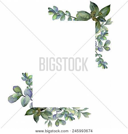 Boxwood Leaves In A Watercolor Style.frame Border Ornament Square.  Aquarelle Leaf For Background, T