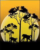 Animals of Africa - Illustration Vector Format poster
