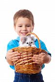 Smiling little boy with kitty in wicker isolated on white poster