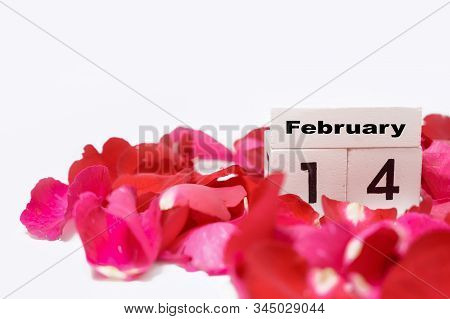 14 February, The Day Of Love