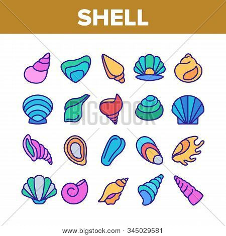 Shell And Marine Conch Collection Icons Set Vector Thin Line. Nature Ocean Shell For Shellfish, Aqua