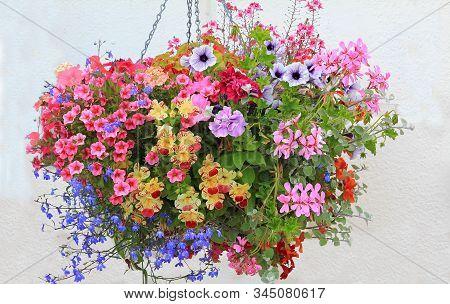 Colorful Hanging Flower Basket With Petunias, Lobelia, Geranium And Bidens In A Flower Pot