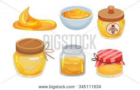 Sugary Honey In Jars And Ceramic Bowls Vector Set