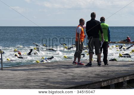 Referees And Swimmers