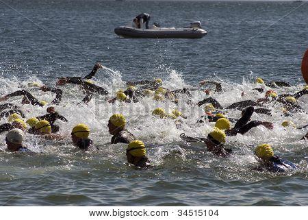 Swim Fight