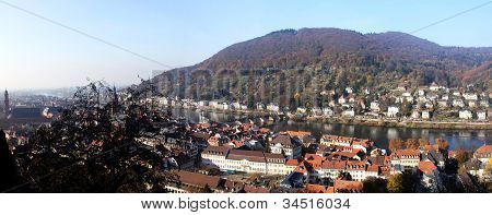 The whole part of old city of Heidelberg and Neckar river