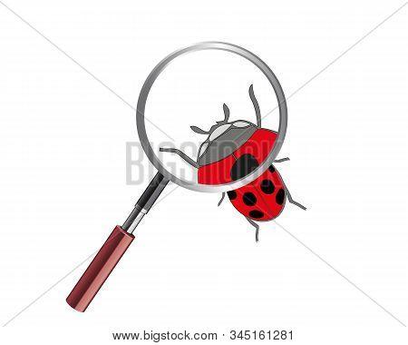 Ladybug Under Microscope. Ladybird On White Background. Cute Cartoon Ladybug Icon.