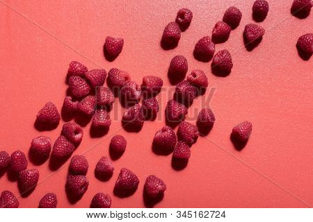 Fresh Raspberry Pile Scattered On A Red Background. Flat Lay Of Tasty Raspberries. Red Shades Monoto