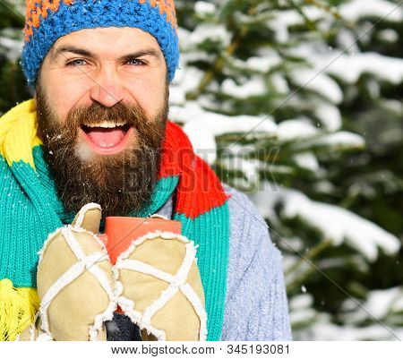 Warming Drinks Concept. Guy With Firtrees Covered With Snow