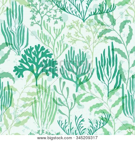 Ocean Corals Seamless Pattern. Kelp Laminaria Seaweed Algae Background. Caribbean Staghorn And Pilla