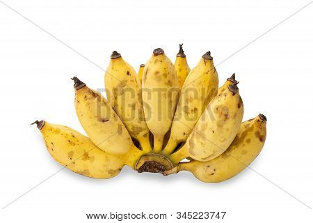 Ripe Cultivated Banana With Yellow Peels And Black Spots Isolated On White Background.