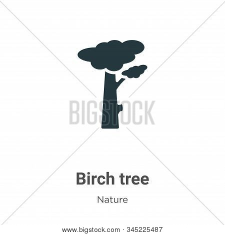 Yellow birch tree icon isolated on white background from nature collection. Yellow birch tree icon t