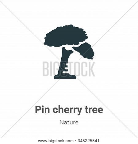 Pin cherry tree icon isolated on white background from nature collection. Pin cherry tree icon trend