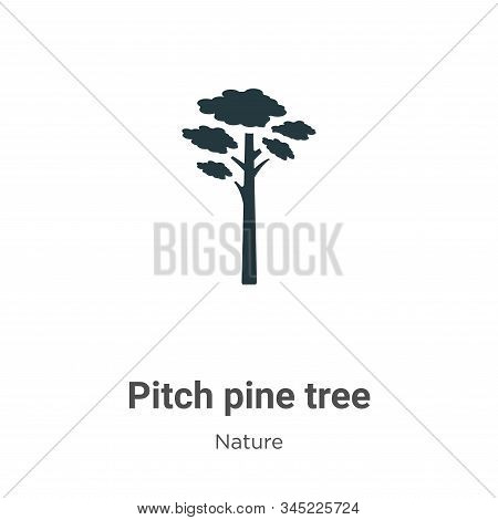 Pitch Pine Tree Vector Icon On White Background. Flat Vector Pitch Pine Tree Icon Symbol Sign From M