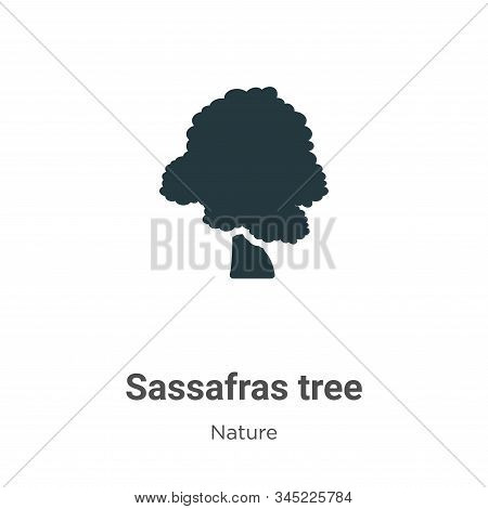 Sassafras tree icon isolated on white background from nature collection. Sassafras tree icon trendy