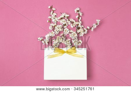 White Gift Bag With Gold Ribbon And Branch Of Spring White Flowers On Bright Pink Background. Greeti