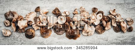 Topview Panorama, Lots Of Delicious Shiitake Mushrooms On Wooden Table, Lentinula Edodes