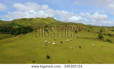 Beautiful Landscape On The Island Of Luzon, Aerial View. Green Hills And Blue Sky With Clouds. Beaut