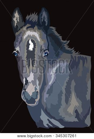 Colorful Cute Pony Foal Portrait. Young Pony Head Isolated On Black Background. Vector Drawing Illus