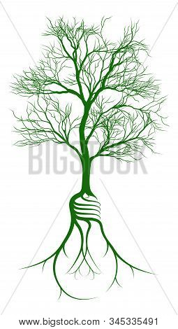 Tree Growing From Light Bulb Shaped Roots. The Growth Of An Idea
