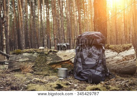 Tourist Backpack, Metal Mug, Camera In The Forest. Concept Of A Hiking Trip To The Forest Or Mountai