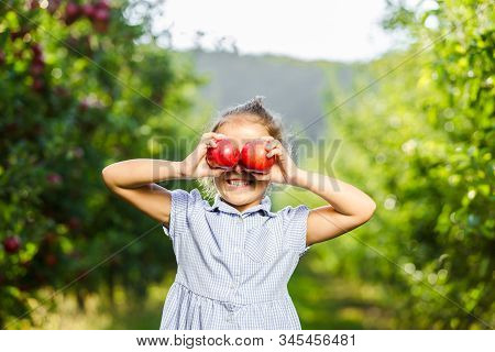 Adorable Little Female Picked Two Fresh Ripe Apples From Apple Tree And Holds Them Infront Of Her Ey