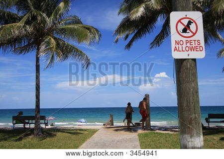 "A ""no pets allowed"" sign on beach in South Florida. poster"