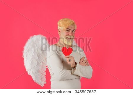 Handsome Angel Cupid. Love Concept. Valentine Angel. Bearded Man With Angel Wings. Valentines Day Ca