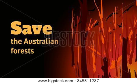 Banner With A Burning Forest And The Inscription Save The Australian Forests. Cartoon Vector Illustr