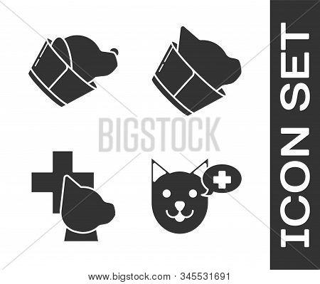 Set Veterinary Clinic Symbol, Veterinary Clinic Symbol, Veterinary Clinic Symbol And Veterinary Clin