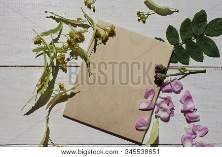 Spring Flower Landscape. Spring Blooming Spring Flowers On A White Background. Flowers In The Spring