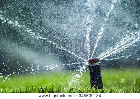 Automatic Sprinkler System Watering The Lawn Close-up