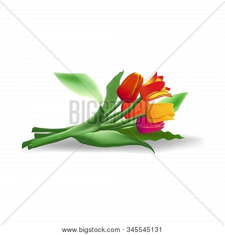 Lying Bouquet Of Five Realistic Vector Tulips With Shadow Isolated On White Background. Red, Yellow