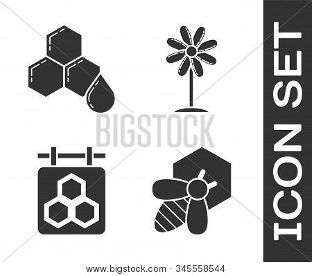 Set Bee And Honeycomb, Honeycomb, Hanging Sign With Honeycomb And Flower Icon. Vector