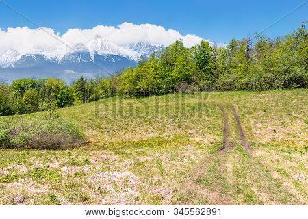 Idyllic Springtime Landscape Composite. Meadow Among The Forest. High Tatra Mountain Ridge With Snow