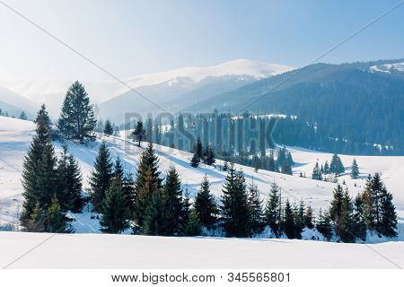 Mountainous Landscape In Wintertime. Amazing Acenery On A Bright Sunny Day. Spruce Forest On Snow Co