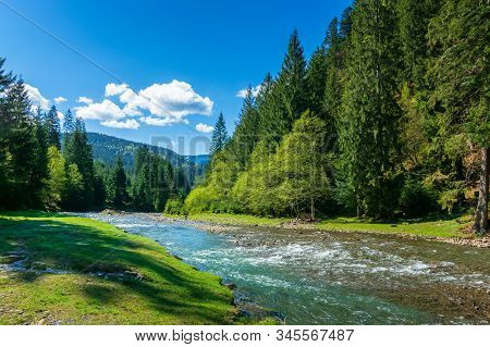 Nature Scene With Mountain River. Spring Vacation In Sunny Valley Of Synevyr National Park, Ukraine.