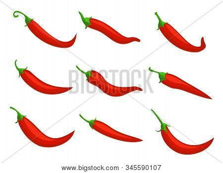 Chilli Pepper Set. Food Ingredient. Hot Red Chili Peppers, Cartoon Mexican Chilli Or Chillies Illust