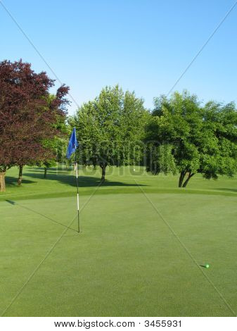 Golf Green In The Summer