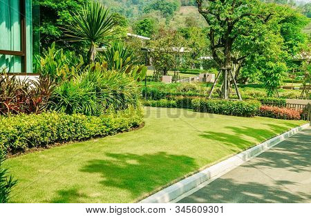 Green Lawn, The Front Lawn For Background, Garden Landscape Design, The Landscape Of The Entrance To