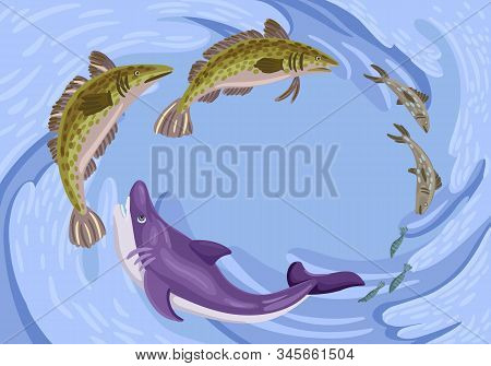 Fish In The Sea. Fish Feed Chain. Shark, Perch And Sardines. Vector Illustration