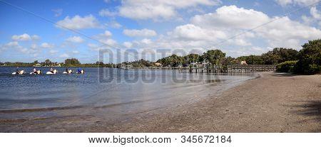 Anna Maria Island, Florida - January 10, 2020: Horses Riding Along The Shoreline Of Jones Bayou On A